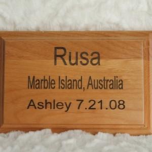 laser plaque wood